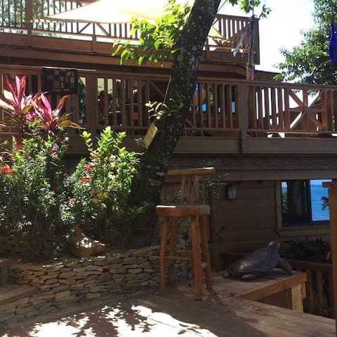 Turtle Studio w/Kitchen, Steps to Beach/Dock/Pools