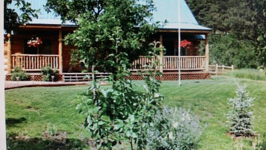 Colorado Log Cabin Serene Setting - Bayfield - 통나무집