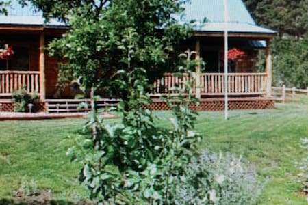 Colorado Log Cabin Serene Setting - Bayfield - Cottage