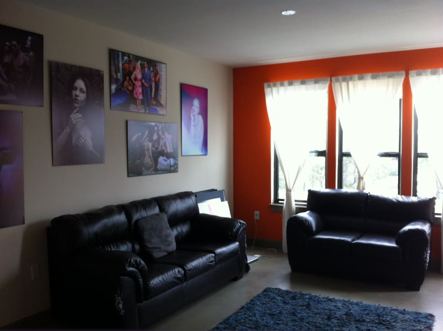 2 Sofas, Large Mounted Flatsceen, 3 Large Windows with Blinds. Lots of Natural Light.