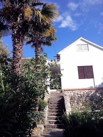Beautiful house near beach - Seget Vranjica - Haus