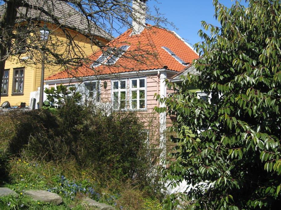 The address is Klostersmauet 6, (ground floor) pink house).