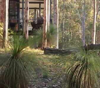 Bush retreat in a grass tree forest - Tamrookum Creek - Hus