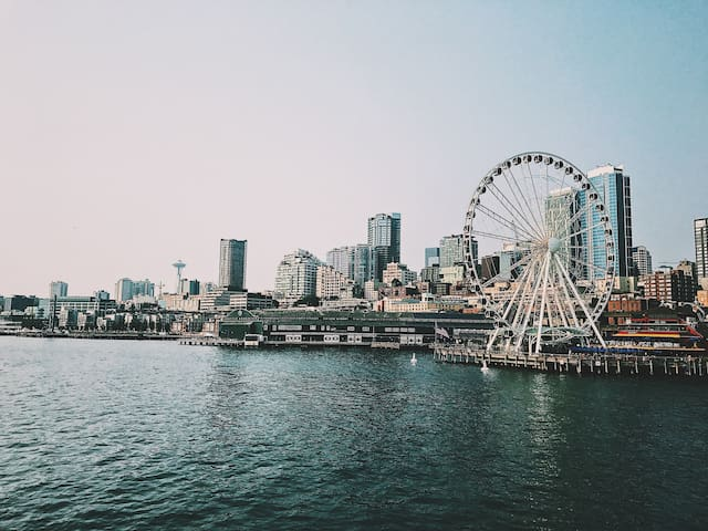 Downtown Seattle Waterview Apartment 1BR