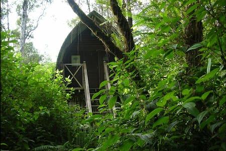 Bali Hut Treehouse - Pāhoa