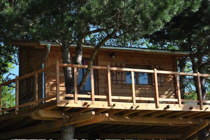 L' Etournelle cabane perchée/gite/chambre d'hôtes