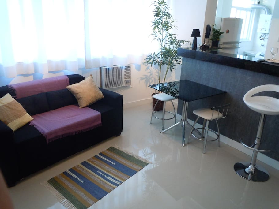 Fully air conditioned apartment , sofa bed for 2 people