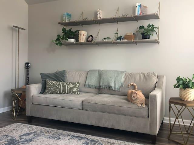 Peaceful Cat Lover's Hideaway Near Logan Square