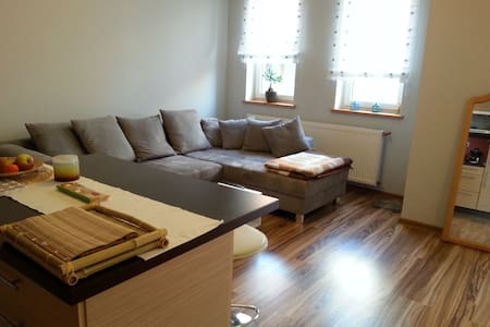 vollausgestattete 2 Zimmer Wohnung nah Flughafen - Poznań - Apartment