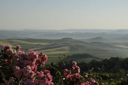 Panoramic Country Suite Montalcino  - Montalcino - Daire