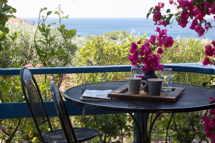 Seaside Olive Orchard Villa Sounio