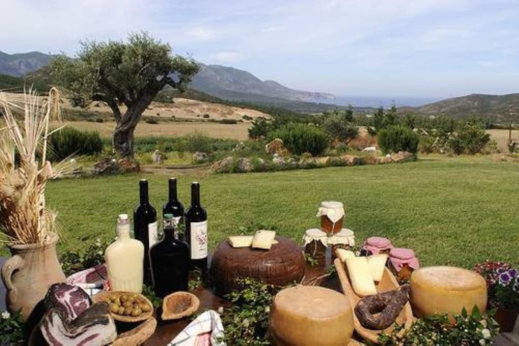Typical products of sardinia and costa rei