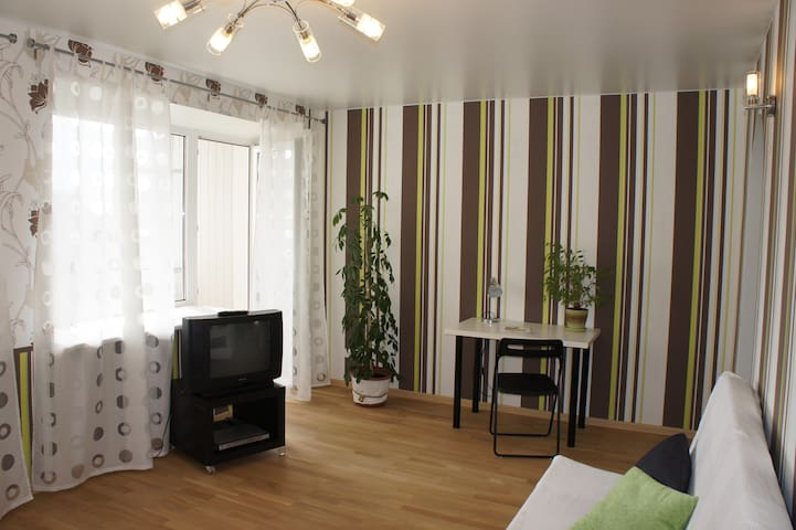 Cozy apartment in the city center - Yekaterinburg - Apartment