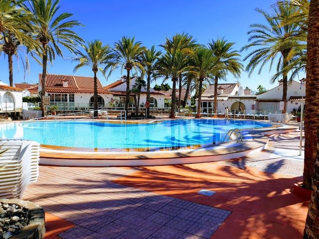StayHC Palmtrees Paradise