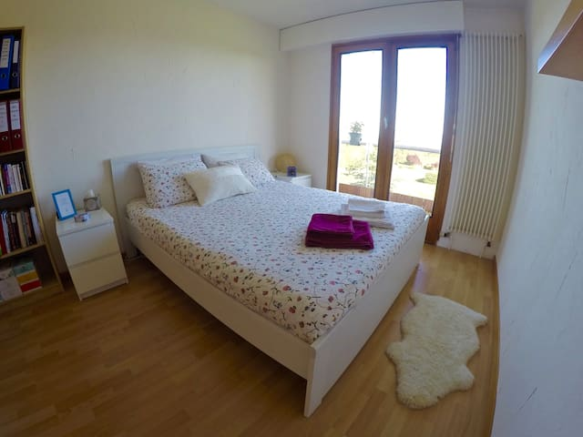 Private room close to Geneva, Palexpo & CERN - Sergy - Apartament