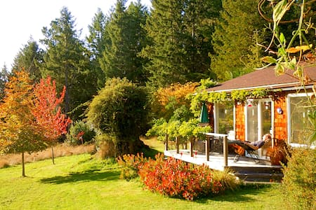 Quiet Meadow Cottage near Mendocino & ocean shores - Albion