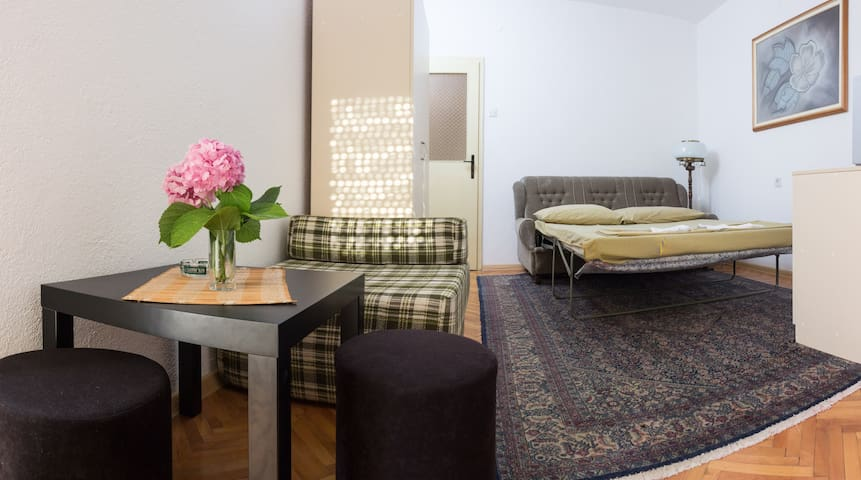 Private, quiet and interesting vac - Ohrid - Flat