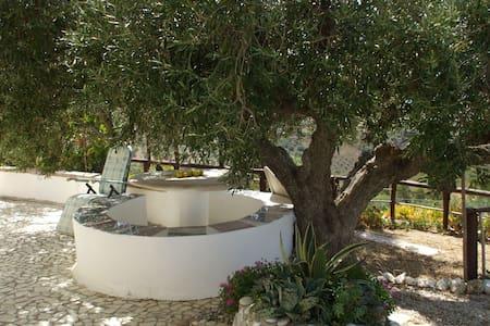 Bellavista - Sicilian Garden Villa - Cianciana