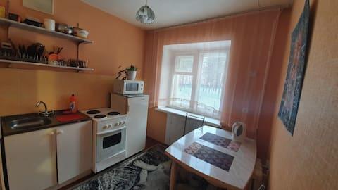 1 комнатная квартира на приморской 15