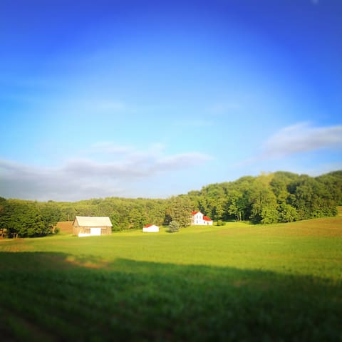 Rural Escape in Mohican Country - Perrysville - Huis