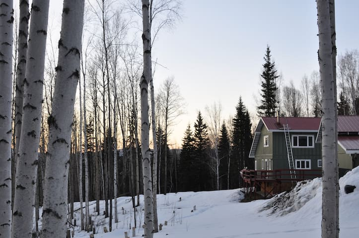 Alaskan Odysseys: Ideal Blend of Cabin & House