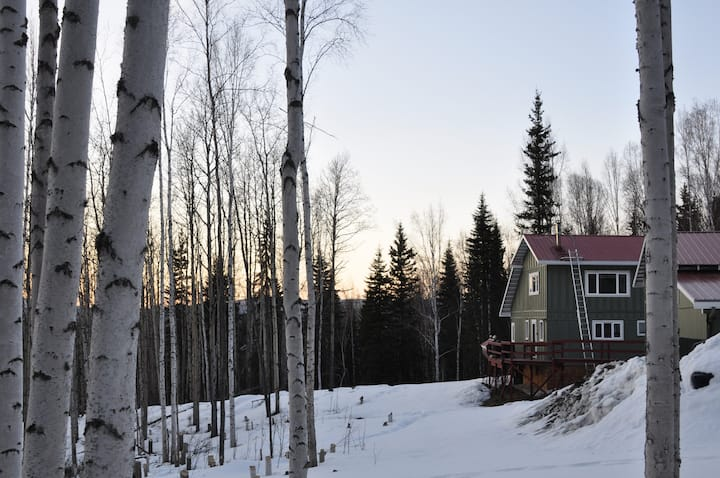 An ideal blend of cabin & house. Alaskan Odysseys