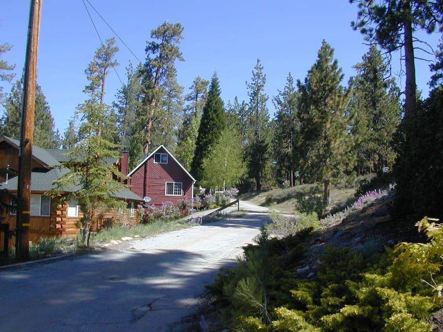 Blue jay lake view case in affitto a big bear lake for Cabine di noleggio in big bear ca