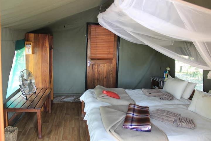 Ndhovu Safari Lodge - Twin-Bedded Tents