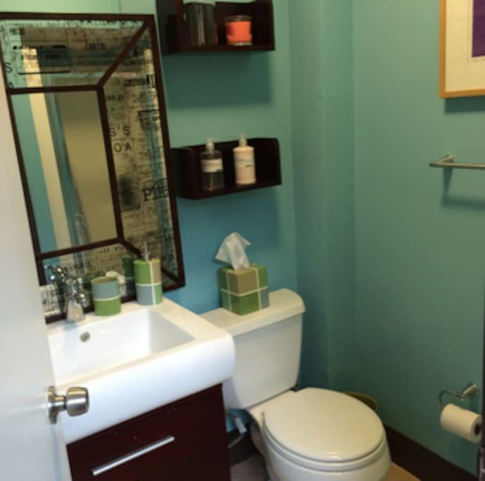 Newly refinished bathroom