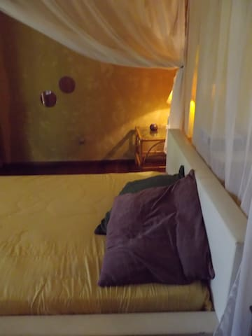 Room in the forest - Brasilia - Maison