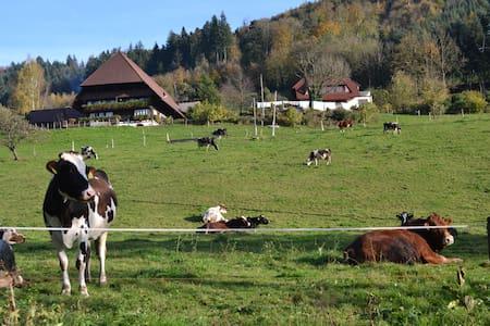 84m² Ferienwohnung am Bauernhof im Schwarzwald
