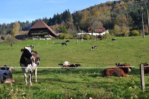 84m² dovolenkový byt na farme v Čiernom lese