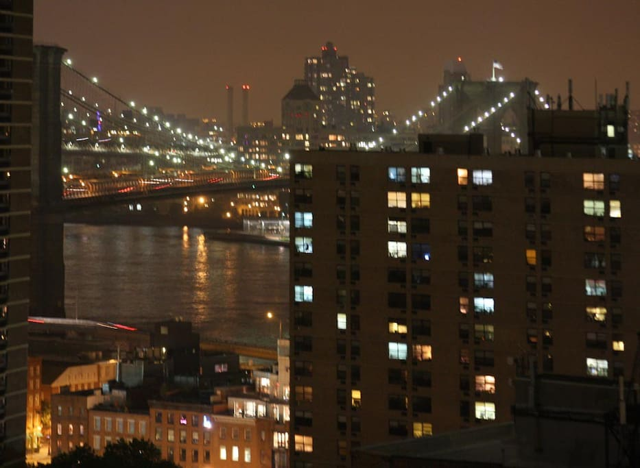 Mesmerizing views of the Brooklyn and Manhattan bridges from every room.