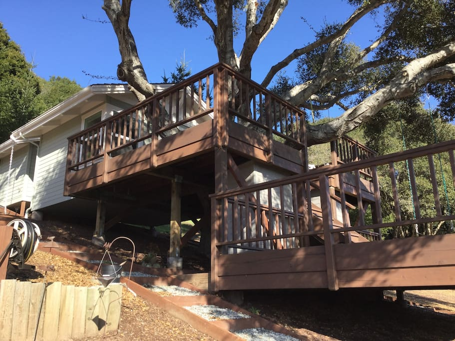 There is decking surrounding the whole Treehouse.