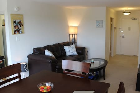 Cozy Crystal City Studio Near DC Metro! - Arlington - Apartment