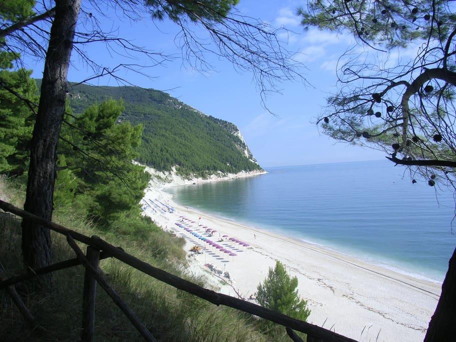 spiaggia a sirolo