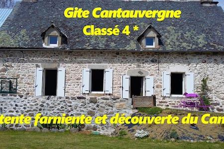 GITE4*AU COEUR DE L'AUVERGNE AVEC BALNEO ET SAUNA