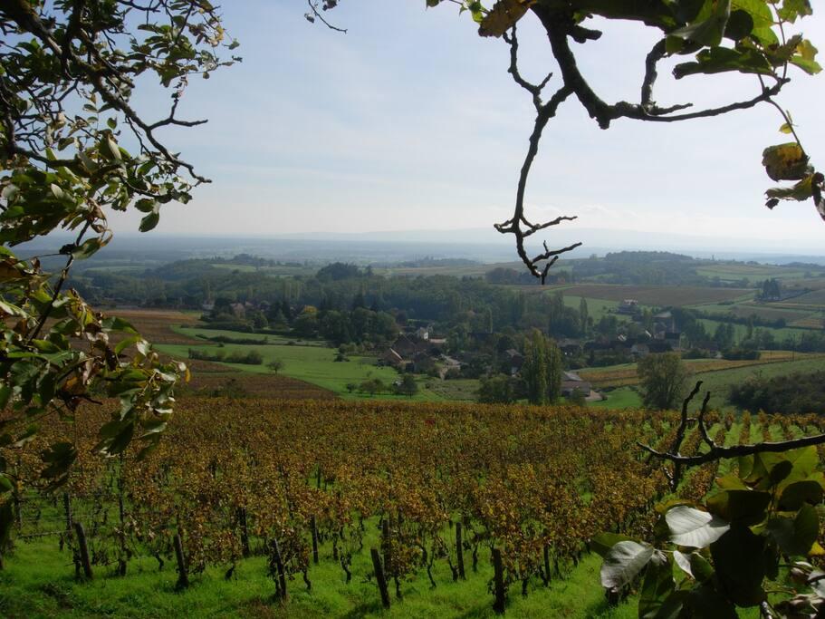 Le hameau au cœur du vignoble