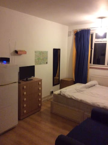Spacious double room near battersea Park