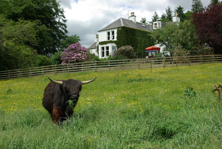 craigadam  C18th  country house - Castle Douglas - Bed & Breakfast