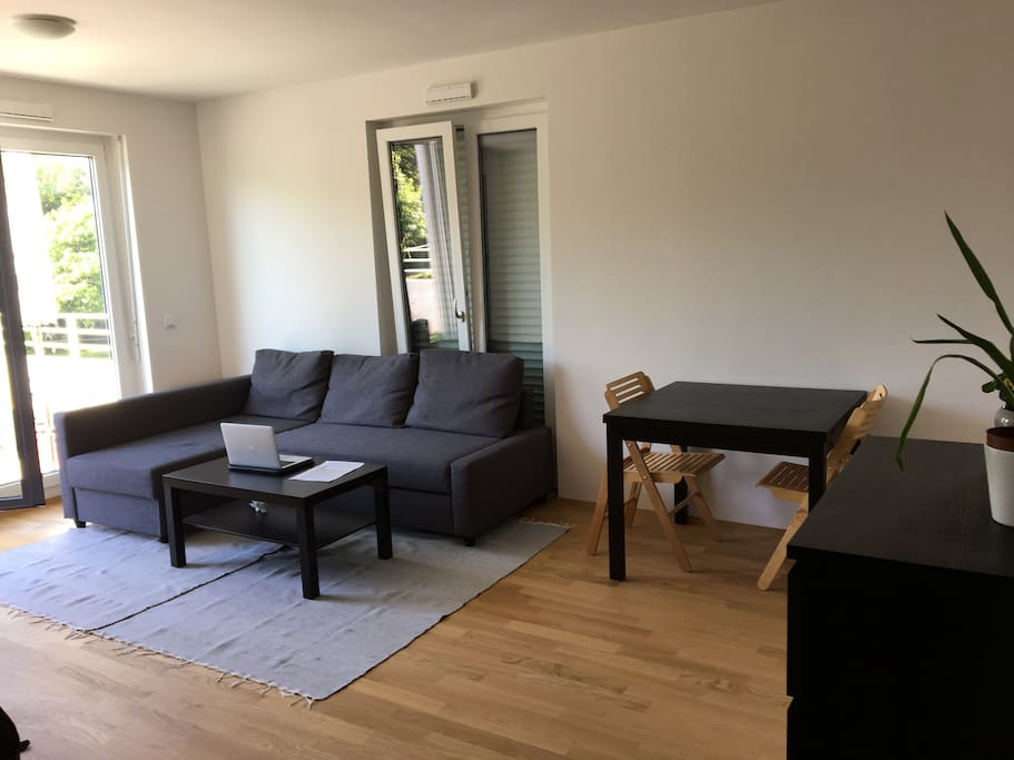 Living room with sleeping couch