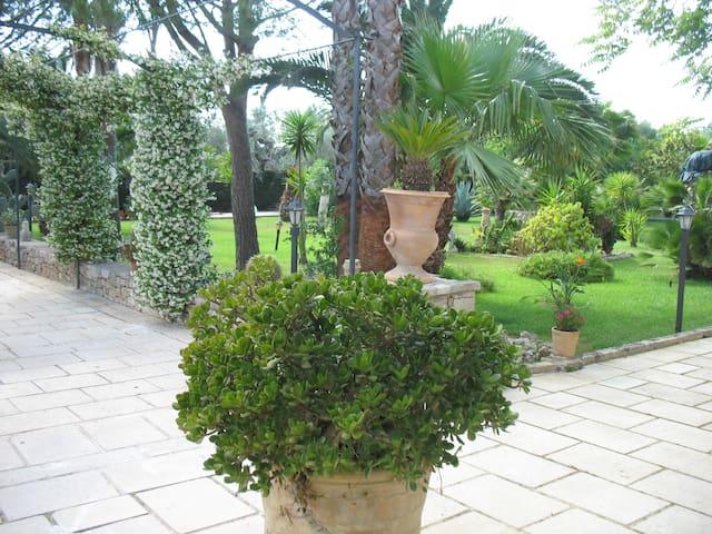 villa cecilia coloniale fine - 800
