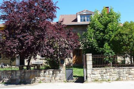 Bonita casa de campo en Alto Ebro. - San Martín de Elines - 獨棟