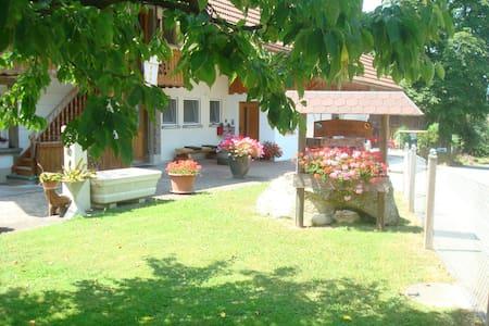 Ferienwohnungen Wangenried  - Wangenried