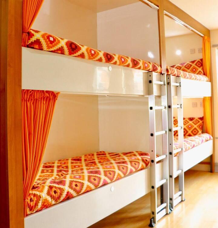 1 Bed in Mixed Deluxe - Room 8