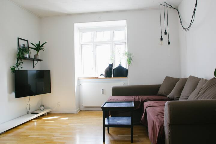 Bright and spacious room in a lovely Cph