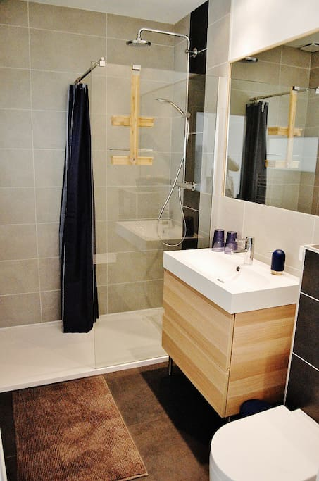 Modern bathroom with rainshower