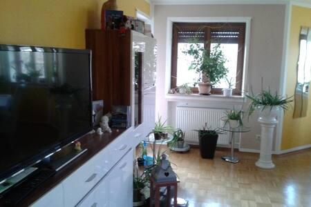 schönes Zimmer mit Balkon im 5 Seen-Land - Appartamento