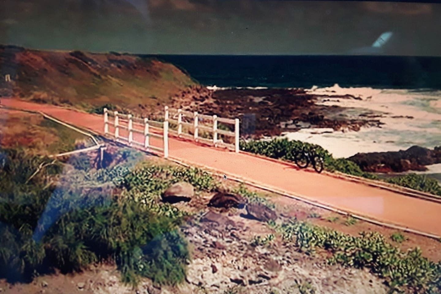 Aloha! A welcoming veiw of the famous Kauai bike path accross the street from your airbnb. Easy access to paradise.