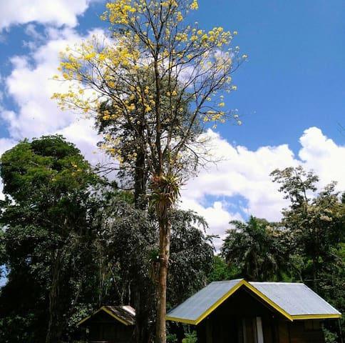 Centro Turístico Los Barrantes